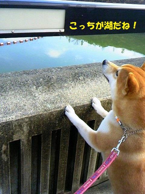 こっちが湖-001