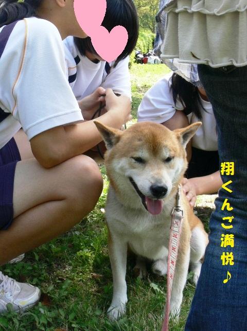 yosiyosi!!.jpg