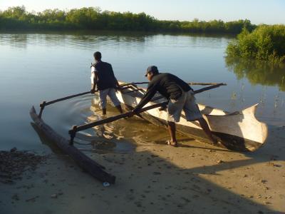 ベタニア漁村 マングローブ