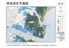 徳島津波浸水予想図