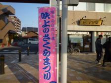 桜祭り 004
