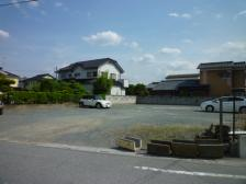 コスモスPⅢ 001