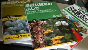 book422.jpg