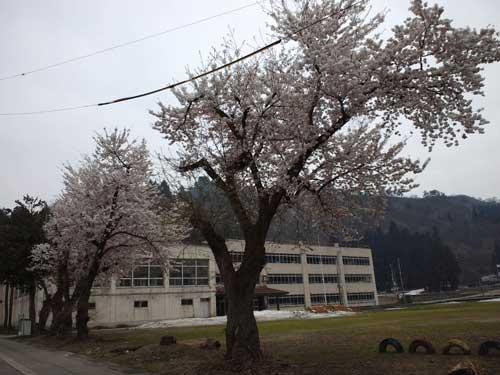CA3J0138a.jpg