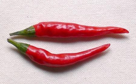 6-tougarasi-2.jpg