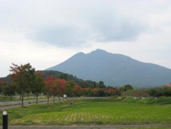 色付き始めの岩木山