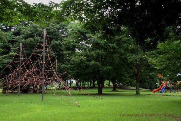 シットリ落ち着いた雰囲気の公園です
