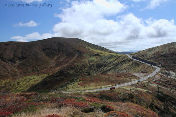 北海道を彷彿とさせる景色でした
