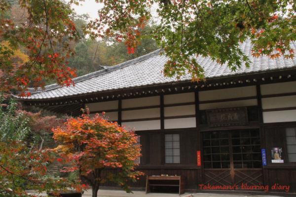 新田義貞ゆかりのお寺です。