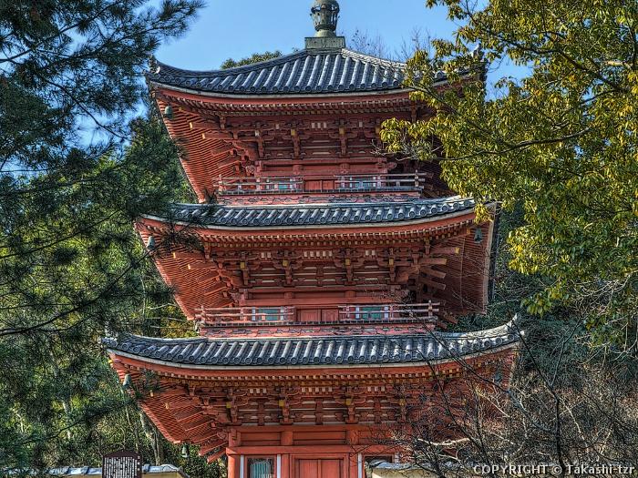 宝福寺三重塔