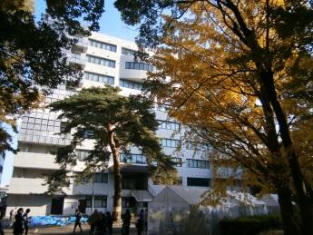 2014-11-24電通大