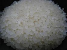 綺麗なお米です