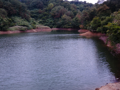 某池その1