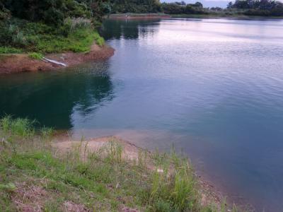 某池その2