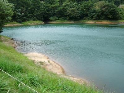 某池その3
