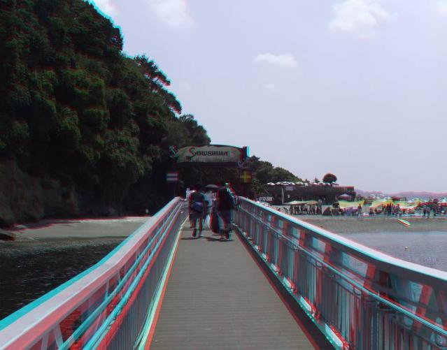 アナグリフ 猿島1