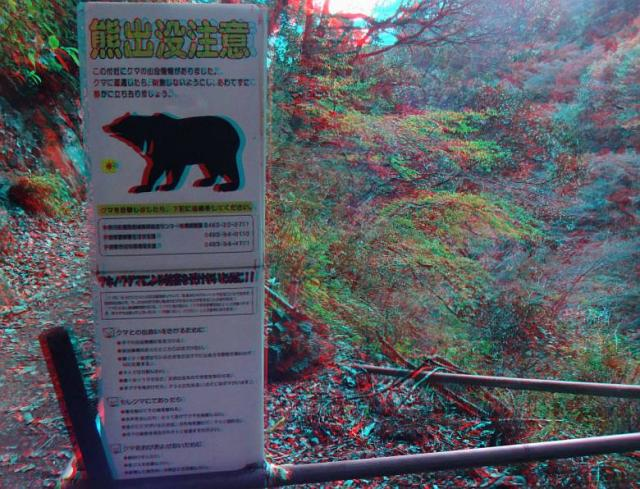 アナグリフ 熊注意