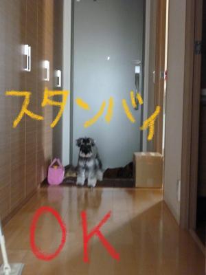 058+-+繧ウ繝斐・_convert_20110412122512