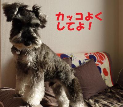 遶ケ蜊・サ」2譛・070+-+繧ウ繝斐・_convert_20110429115848