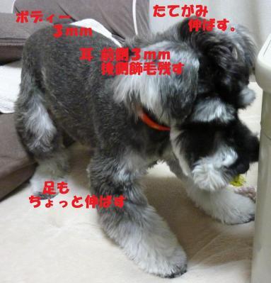 5_2+007+-+繧ウ繝斐・_convert_20110502092459