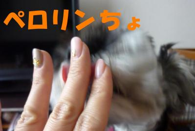 4_30+023_convert_20110430143757.jpg