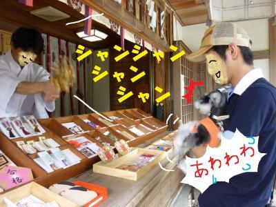7_9+151_convert_20110712104607.jpg