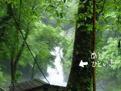 7_9+159_convert_20110712114321.jpg