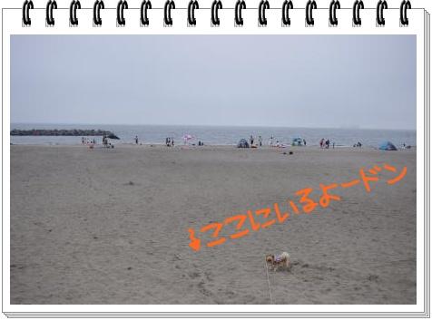 IMGP4536.jpg