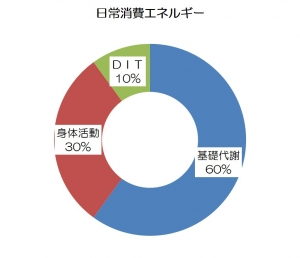 DITグラフ