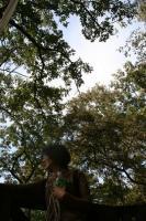 2011 10 17  山のおんぶ 搬出 083_R