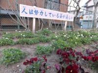 2012  3 お散歩アート 057_R