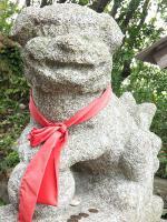 2012 6 5 彩の会 八幡岬  大原漁港 013_R