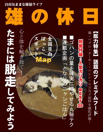 100416osunokyujitu.jpg