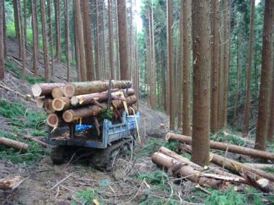 道を使って間伐材を販売すること