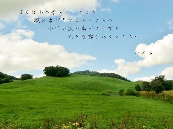 94yx_.jpg