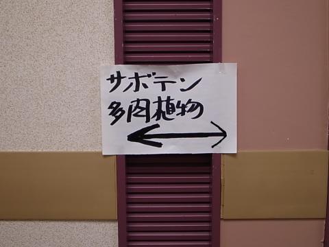 20120603.jpg