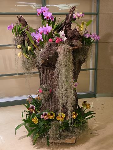 20130114_蘭展会場入り口の展示