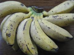 s-島バナナ