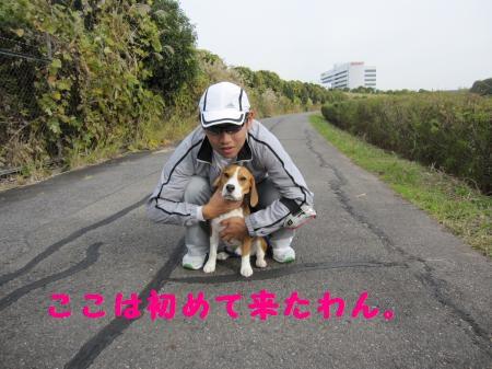 IMG_2290_convert_20111127192340.jpg