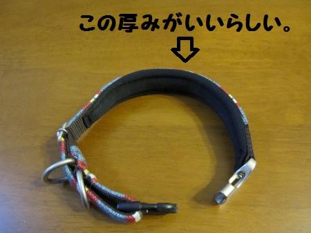 IMG_2395_convert_20111225005608.jpg