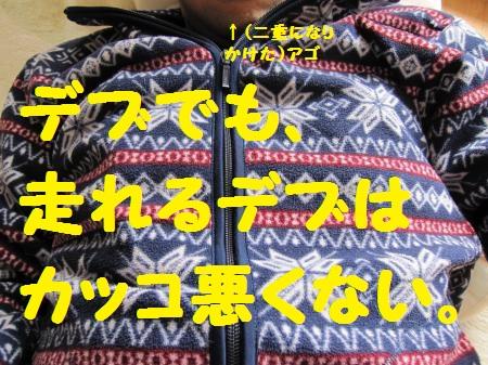 IMG_2540_convert_20120109111649.jpg