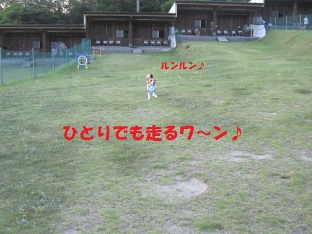 IMG_3632_convert_20120805100045.jpg