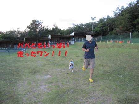IMG_3635_convert_20120805100148.jpg