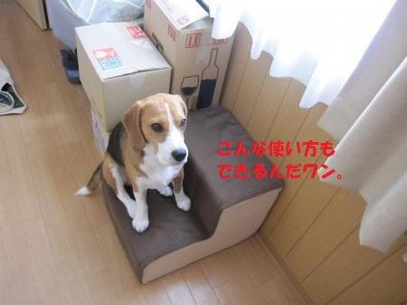 IMG_3824_convert_20120916103522.jpg