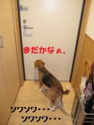 IMG_3852_convert_20120924091254.jpg