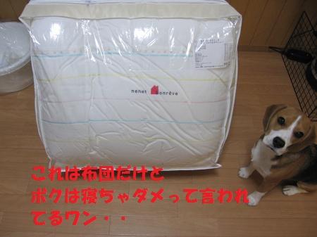 IMG_3888_convert_20120930182813.jpg