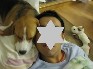 IMG_3907_convert_20121006104620.jpg