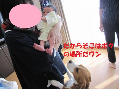 IMG_4074_convert_20121021201943.jpg