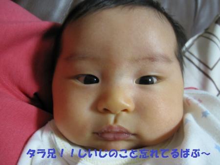 IMG_4369_convert_20121209194312_20121209204301.jpg