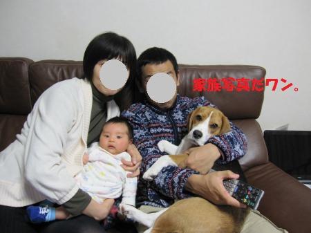 IMG_4376_convert_20121209194401.jpg